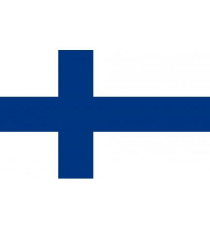 API REGNUM service for Finland