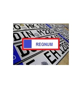 Development of panel to integration of REGNUM / VIN services in your shop