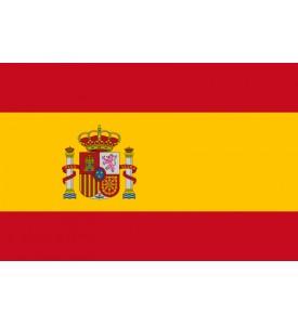 API REGNUM service for Spain