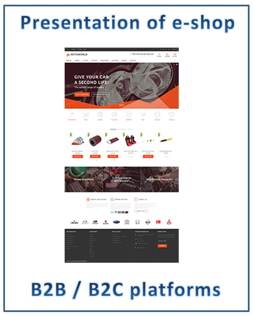 E-shops B2B/B2C